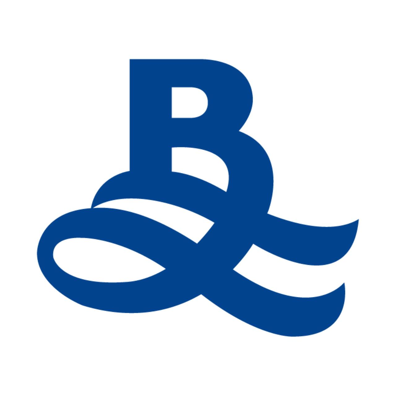 Blueocean property logo