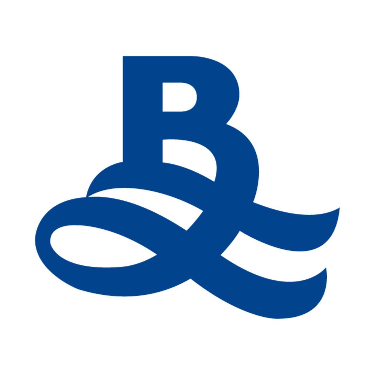 Blueocean property logo