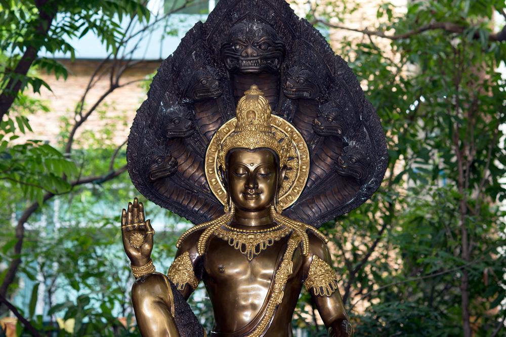 Siam 11