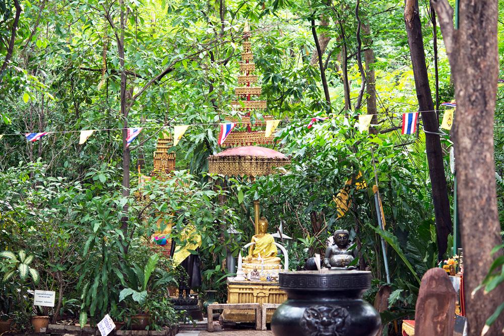 Siam 12