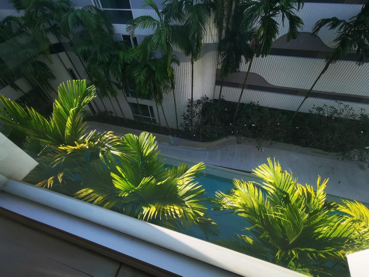 W Real Property Agency's 1 Bedroom Condo for rent in The Base Downtown Phuket, Wichit, Phuket 13