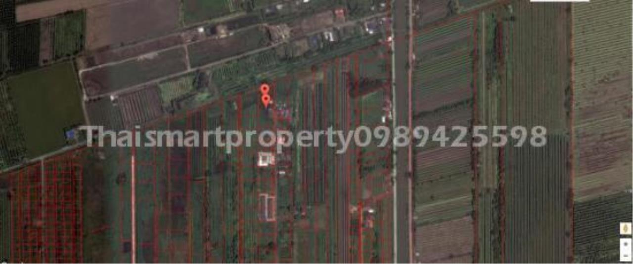Thai Smart Property Agency's Land for sale Rangsit Klong 8 Pathum Thani 2 rai. 5