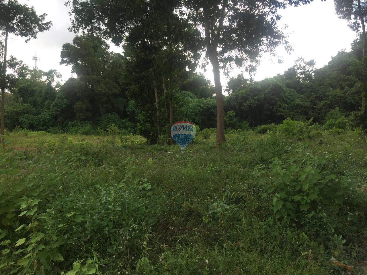 RE/MAX Top Properties Agency's Maung Phuket Land plots 6 Rai for sale 3