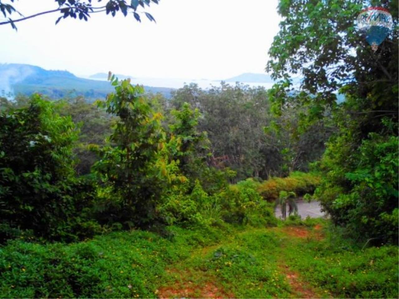 RE/MAX Top Properties Agency's Land for sale in Yamu 2