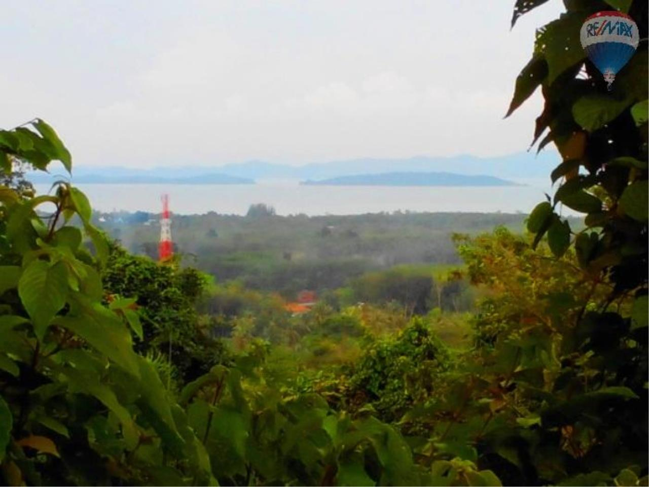 RE/MAX Top Properties Agency's Land for sale in Yamu 4