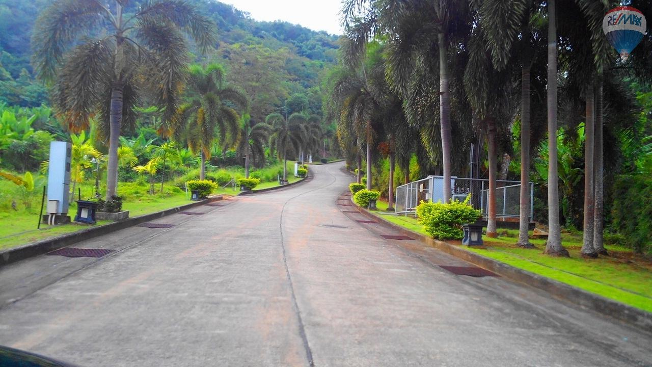 RE/MAX Top Properties Agency's Land for sale in Yamu 6