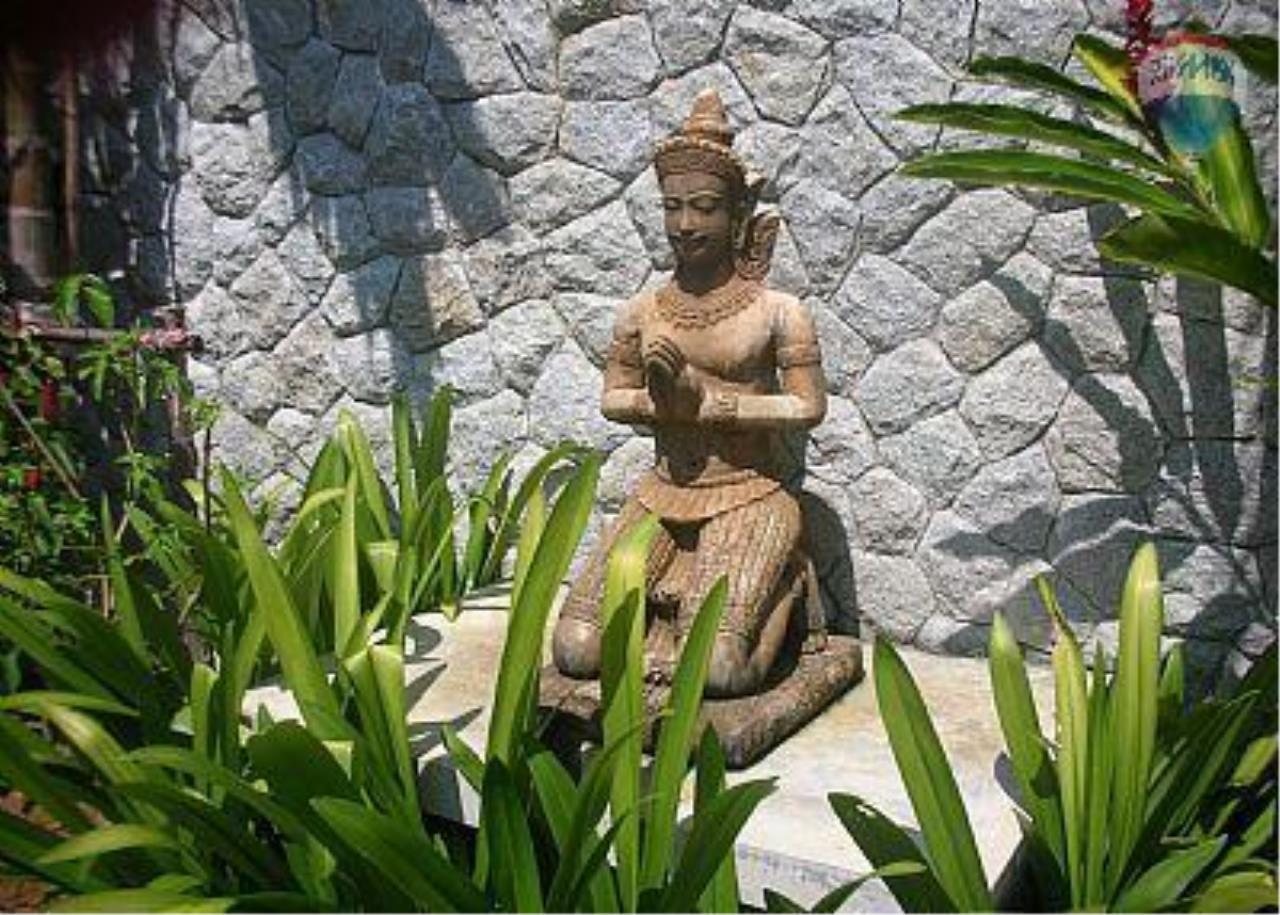 RE/MAX Top Properties Agency's Botanica Villa A5 Rent 26