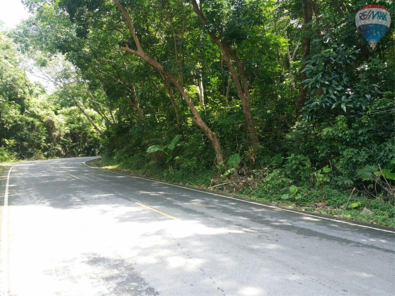 RE/MAX Top Properties Agency's Land For Sale 1 Rais Rawai Main Road to Naiharn 1
