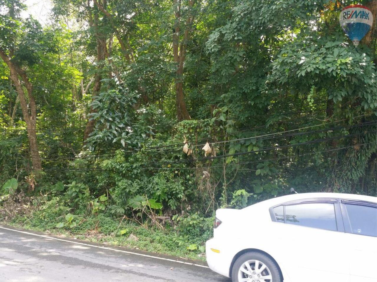 RE/MAX Top Properties Agency's Land For Sale 1 Rais Rawai Main Road to Naiharn 2