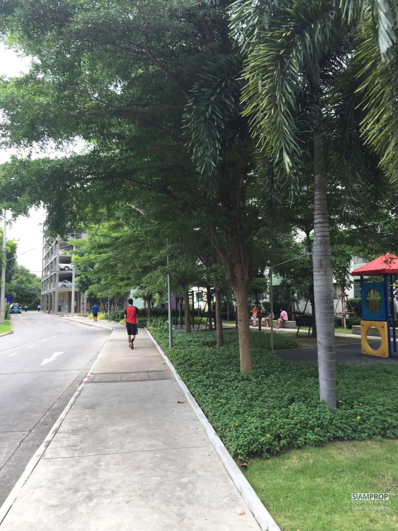 Siam Prop Agency's Lumpini Town Chonburi 11