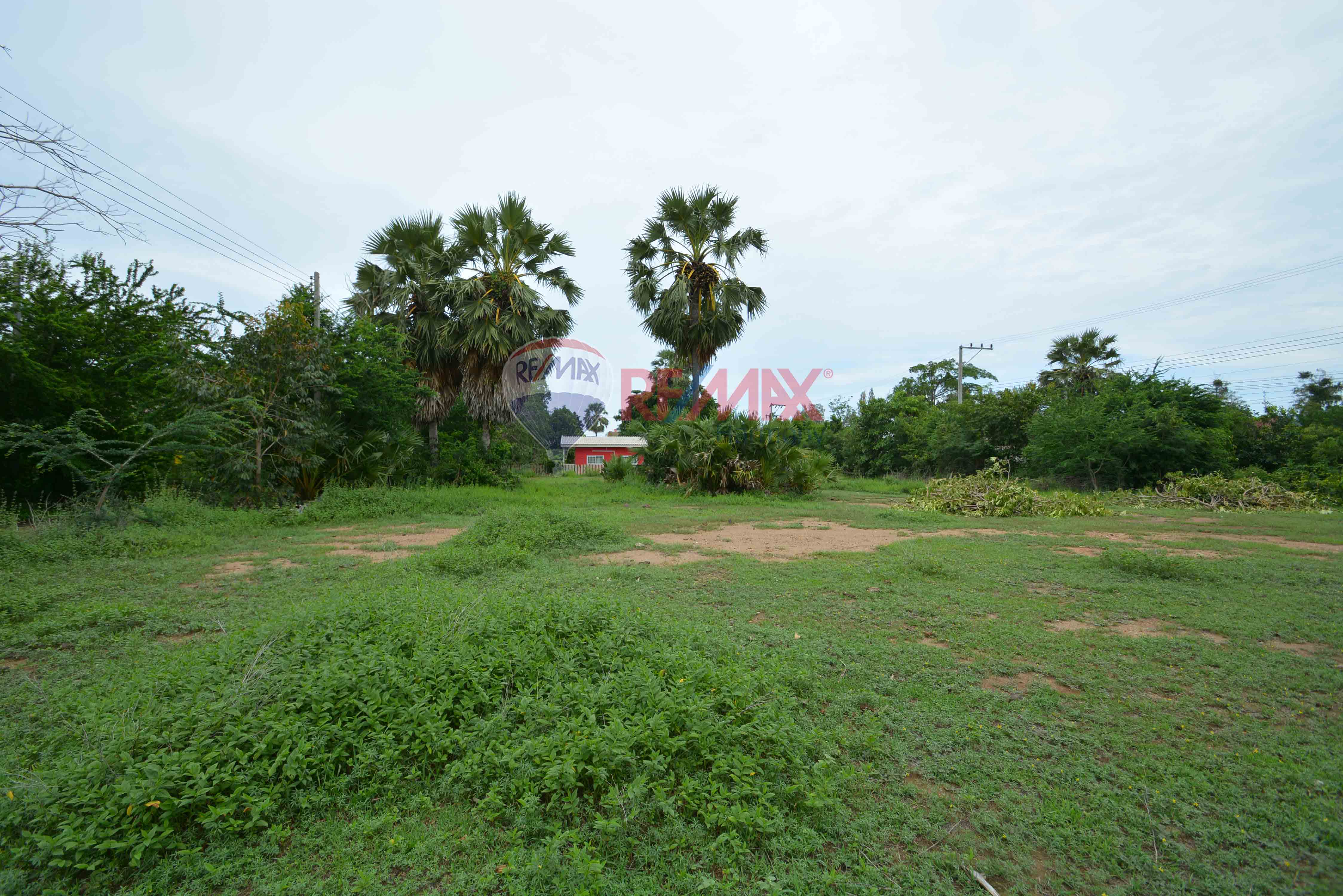 RE/MAX Harmony Agency's Pristine Land ready to develop  1