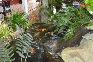 RE/MAX Harmony Agency's Cozy Pool Villa Near Sai Noi Beach Hua Hin 15