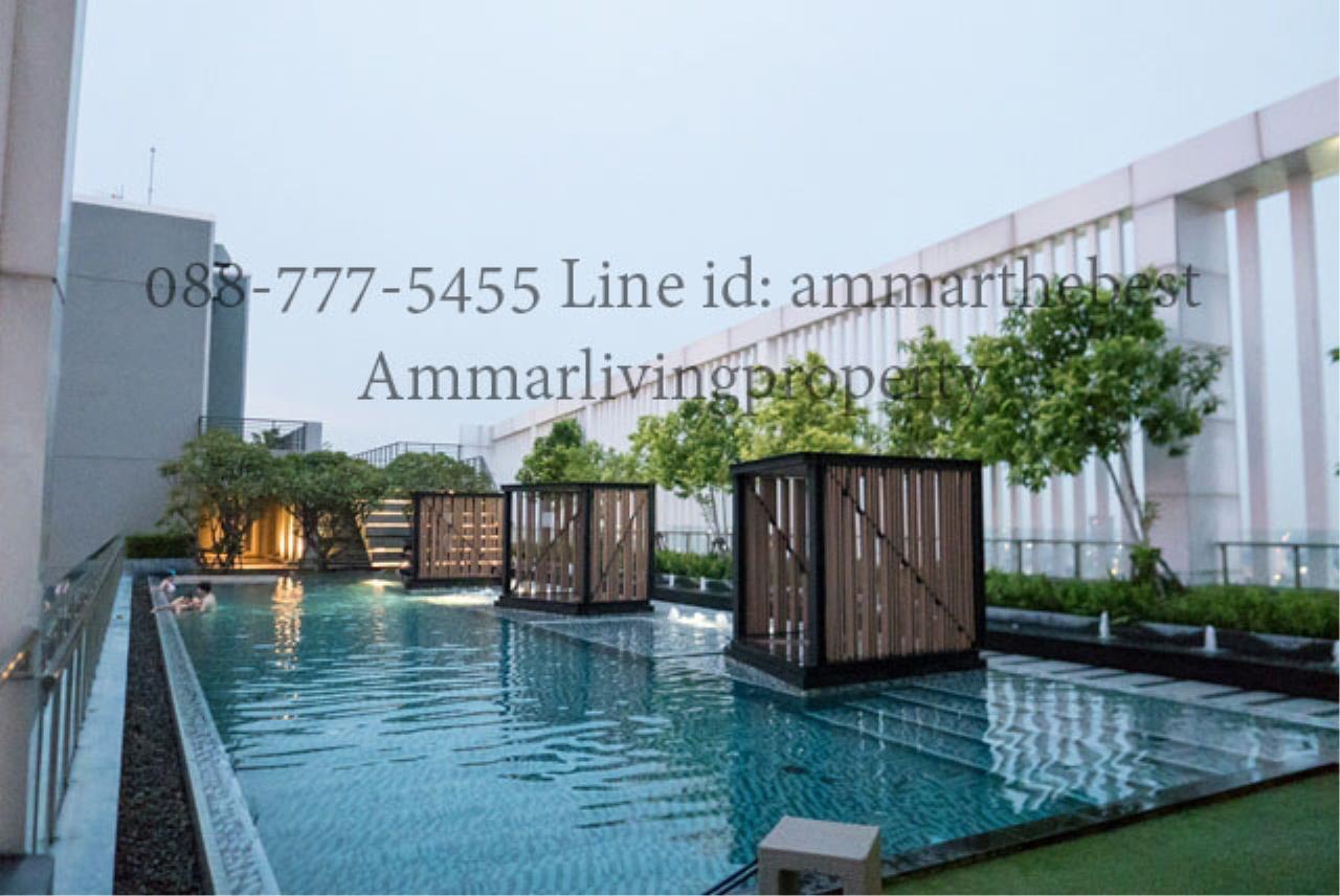 Agent - Ammarlivingproperty Agency's Rent the hotel condominium 1 Bedroom 10 fl (ALP-C-1802028) 9