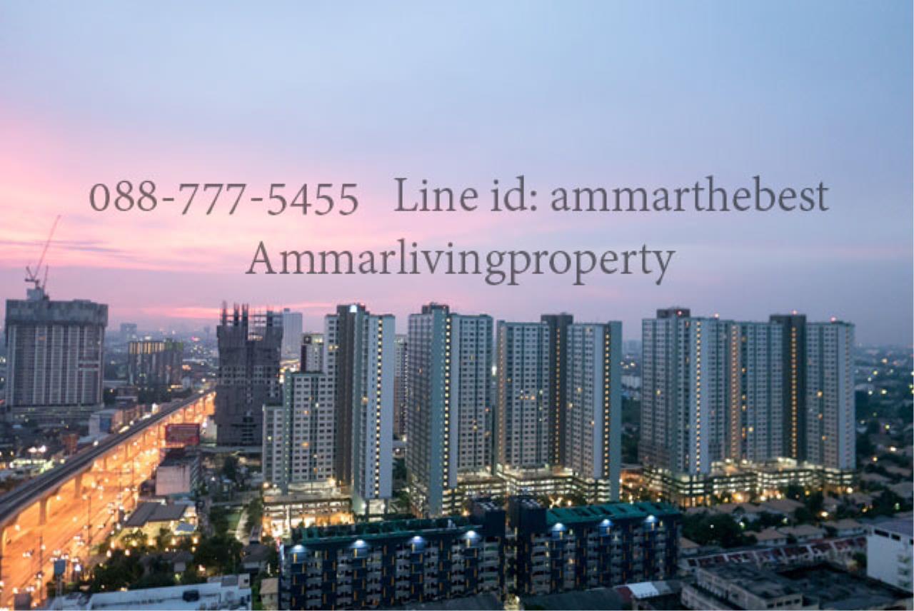 Agent - Ammarlivingproperty Agency's Rent the hotel condominium 1 Bedroom 10 fl (ALP-C-1802028) 8