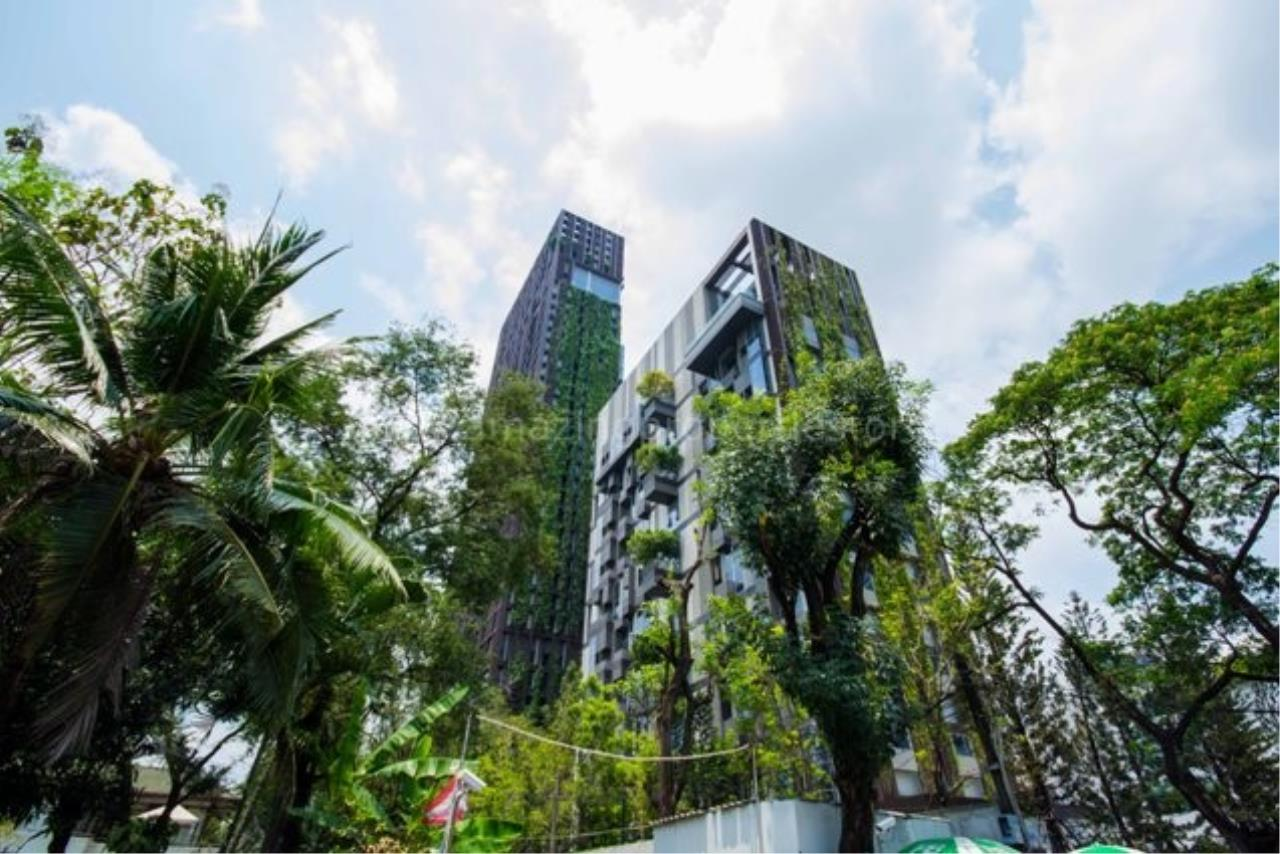 Amazing Properties Agency's 1 bedroom Apartment for sale 7