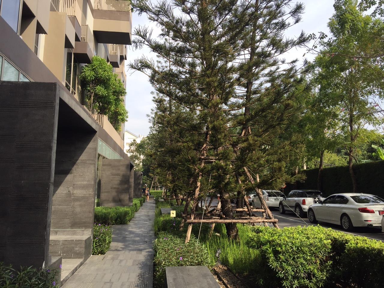 RE/MAX Properties Agency's 1 Bedroom Duplex for Rent ASHTON MORPH 38 (Thonglor) 10
