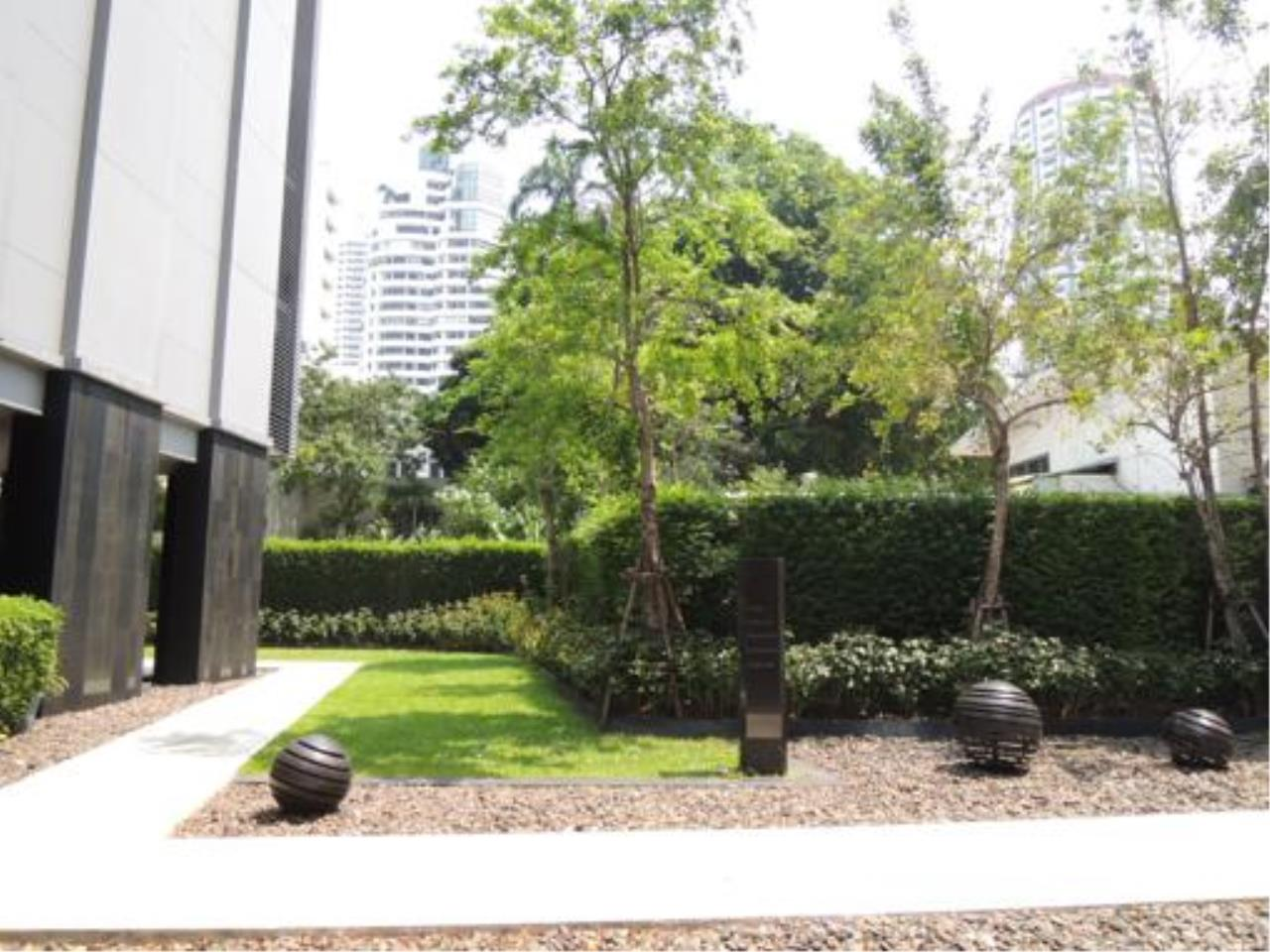 Right Move Thailand Agency's Quattro By Sansiri  for rent 1 Bedroom 56 Sqm 12