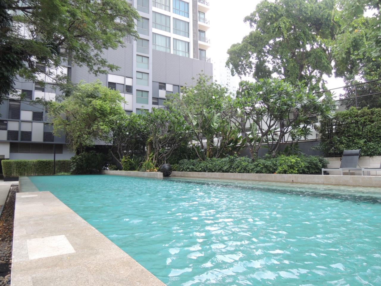 Right Move Thailand Agency's Quattro By Sansiri  for rent 1 Bedroom 56 Sqm 16