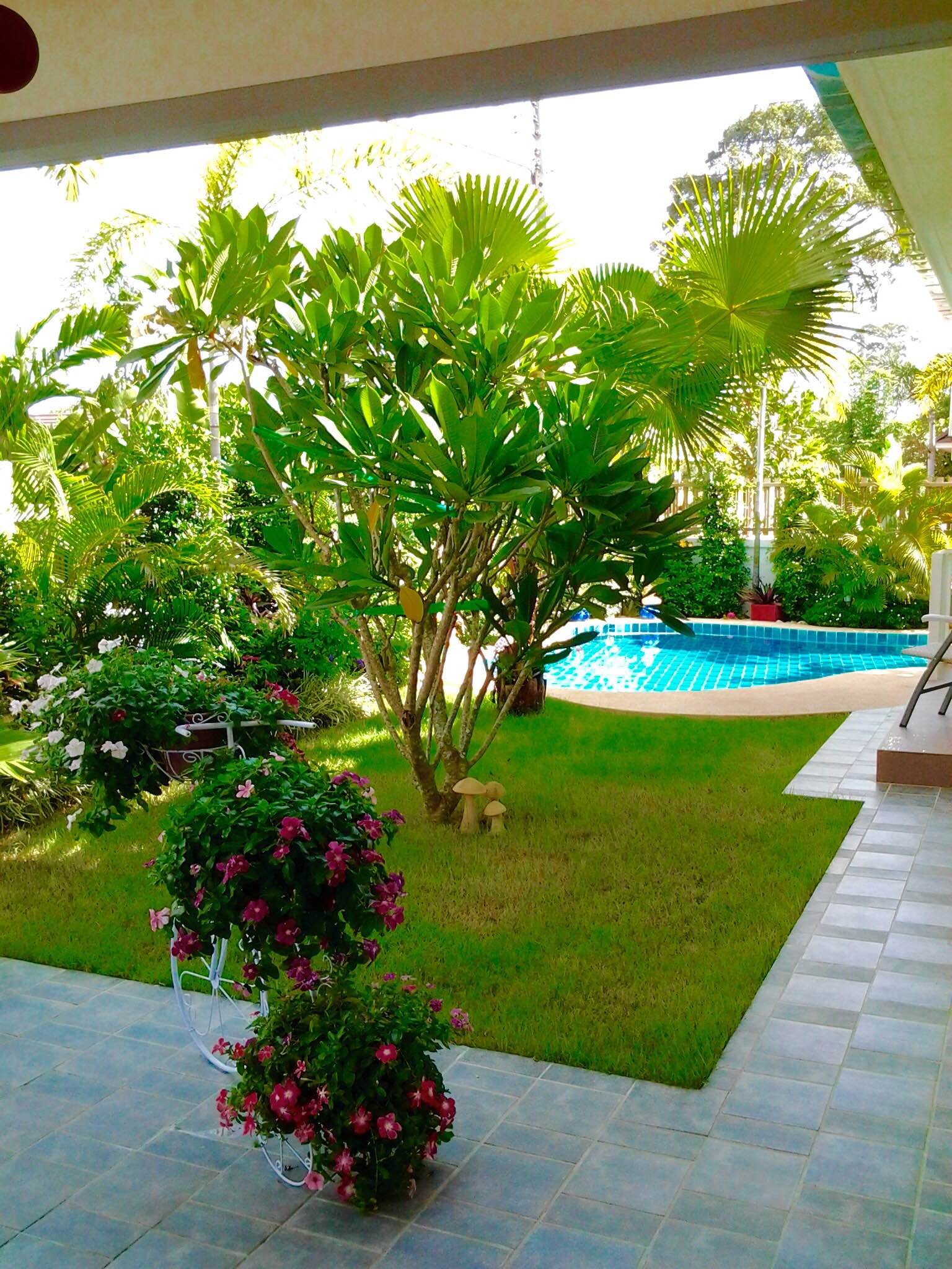 VisionQuest Thailand Property Agency's Bang Saray Beach House for sale at a low price!!! 23