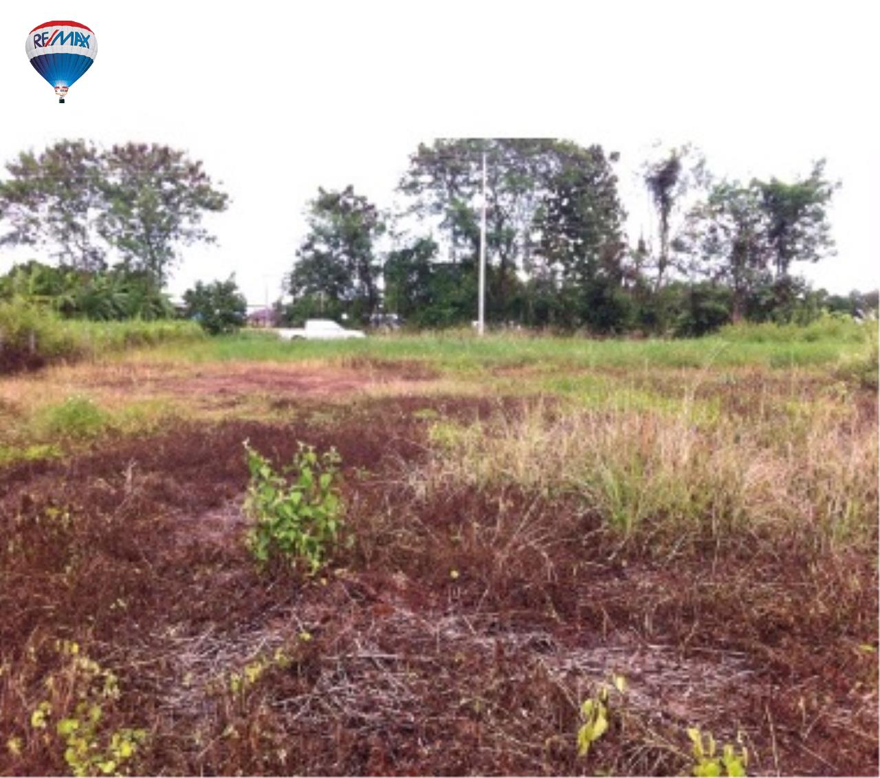 RE/MAX Classic Agency's nice land for build the house Chiang Rai  2