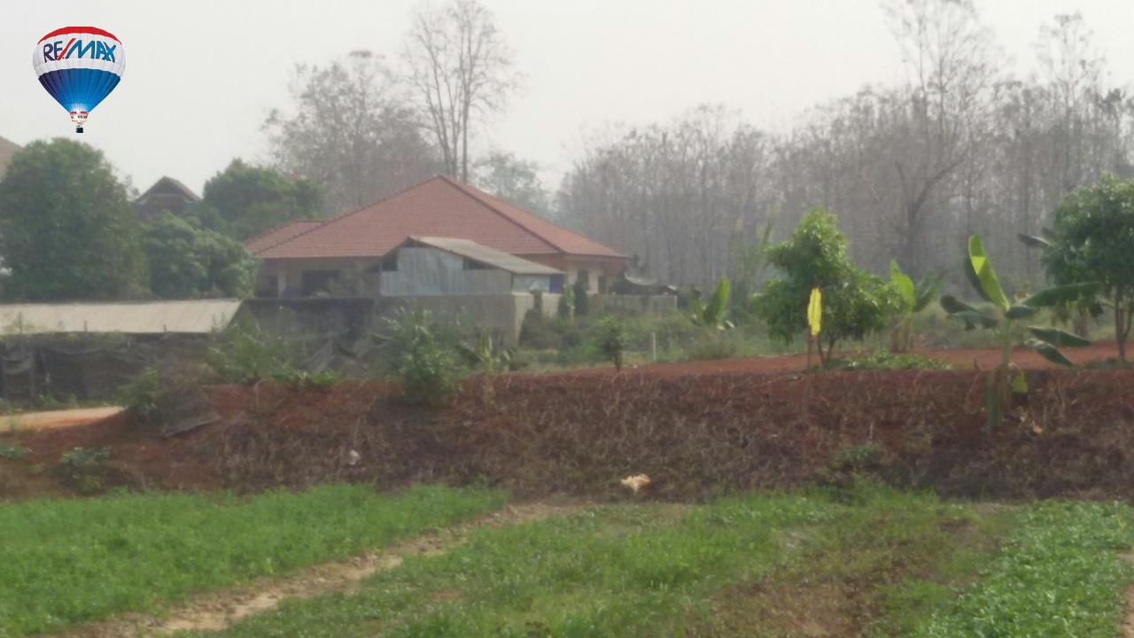 RE/MAX Classic Agency's Land For Sale Low Price Beautiful in Chiangrai 10