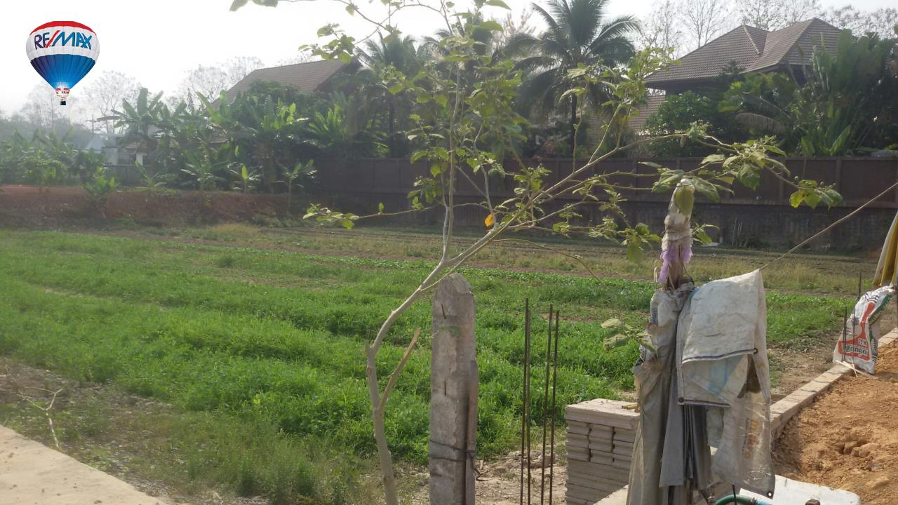 RE/MAX Classic Agency's Land For Sale Low Price Beautiful in Chiangrai 12