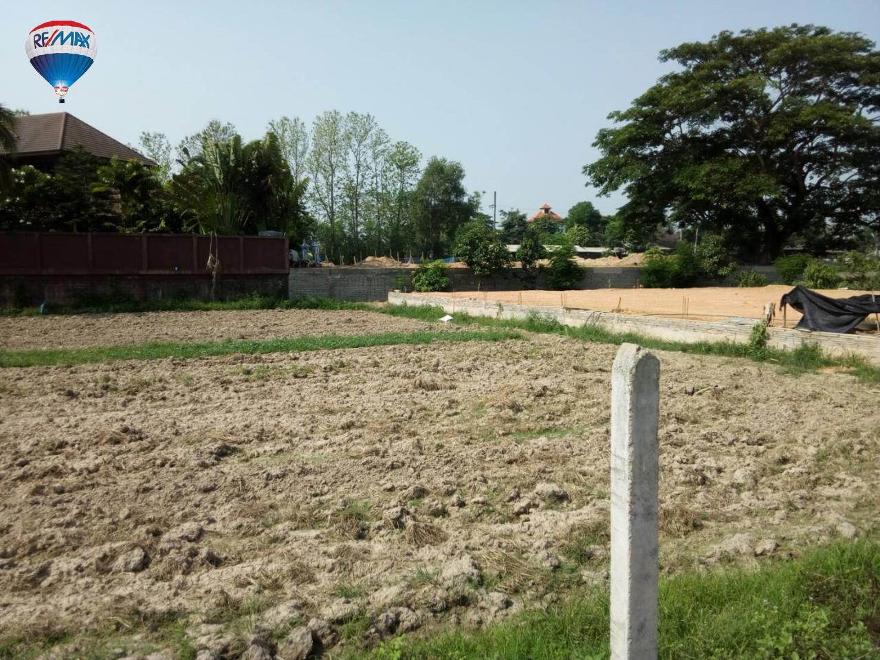 RE/MAX Classic Agency's Land For Sale Low Price Beautiful in Chiangrai 15