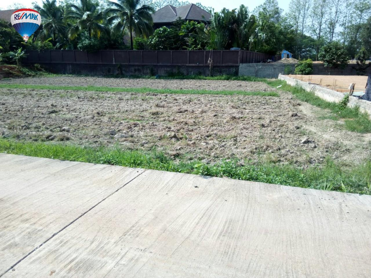 RE/MAX Classic Agency's Land For Sale Low Price Beautiful in Chiangrai 17