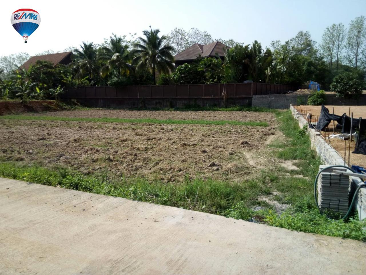 RE/MAX Classic Agency's Land For Sale Low Price Beautiful in Chiangrai 18