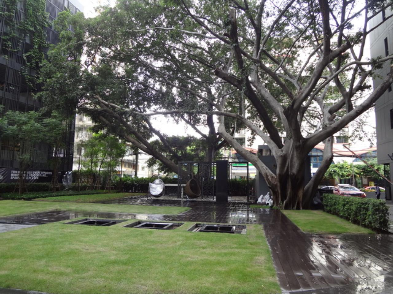 Forbest Properties Agency's 33694 - For Rent The Seed Mingle Condominium ,South Sathorn Road Soi 3 6