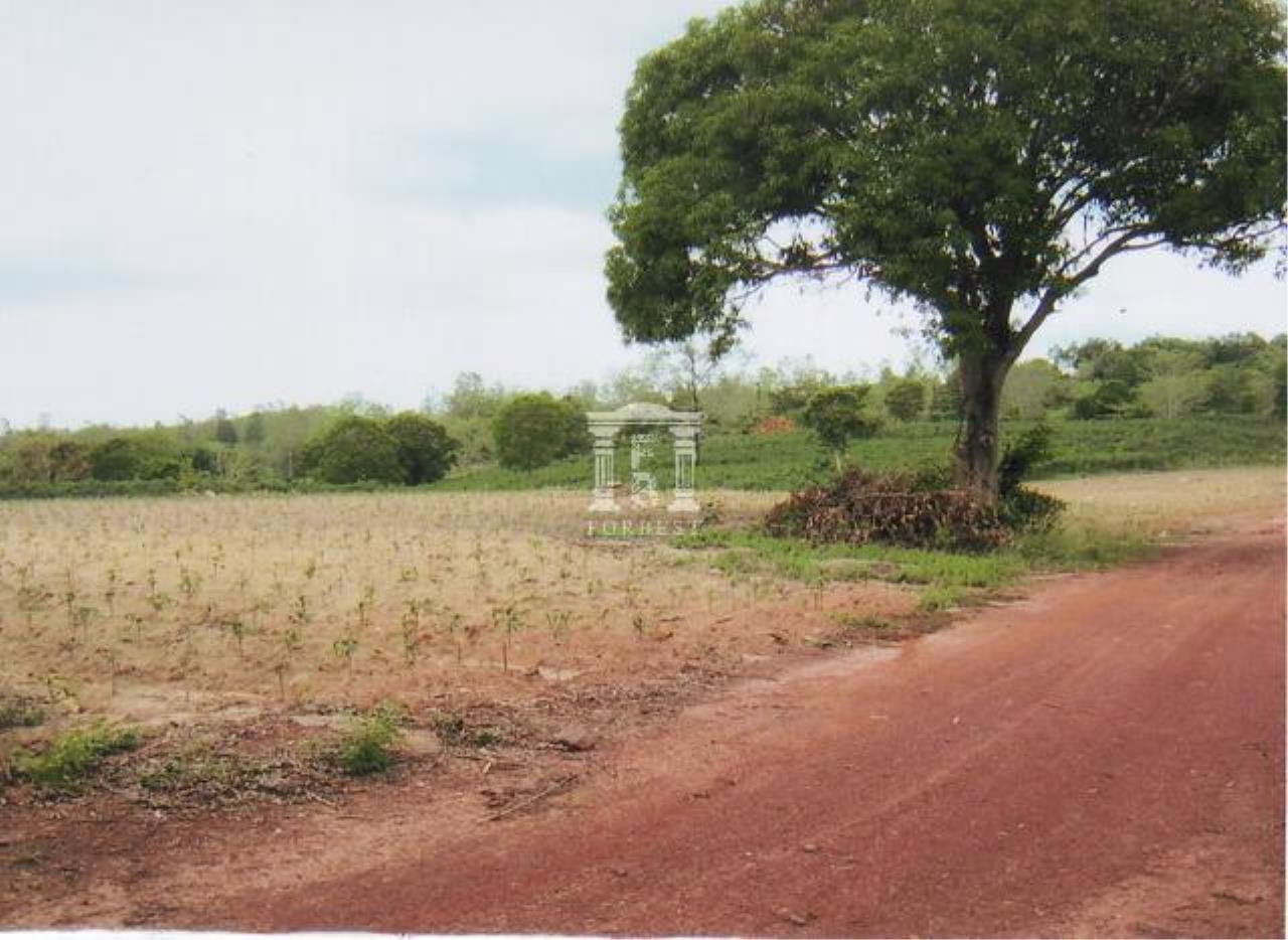 Forbest Properties Agency's 35359 - Land For Sale, in Nadee district, Prajeenburi province, land size 198 rai 73 sq.wa. 4