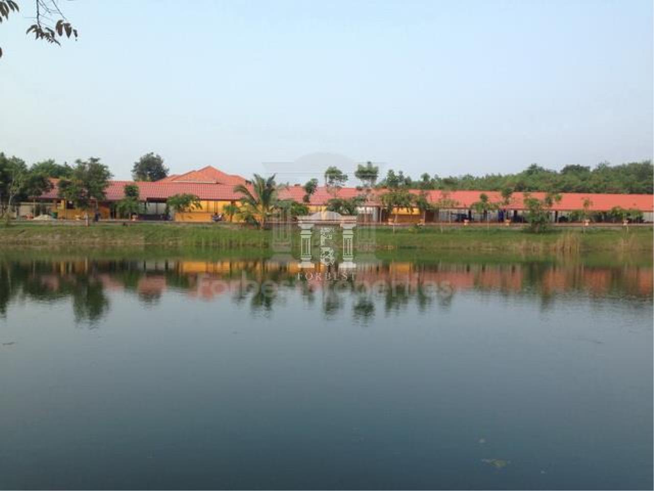 Forbest Properties Agency's 36632 - Land Pak Chong , Khao Yai, Nakhon Ratchasima 48 Rai 27 sq.w. 4