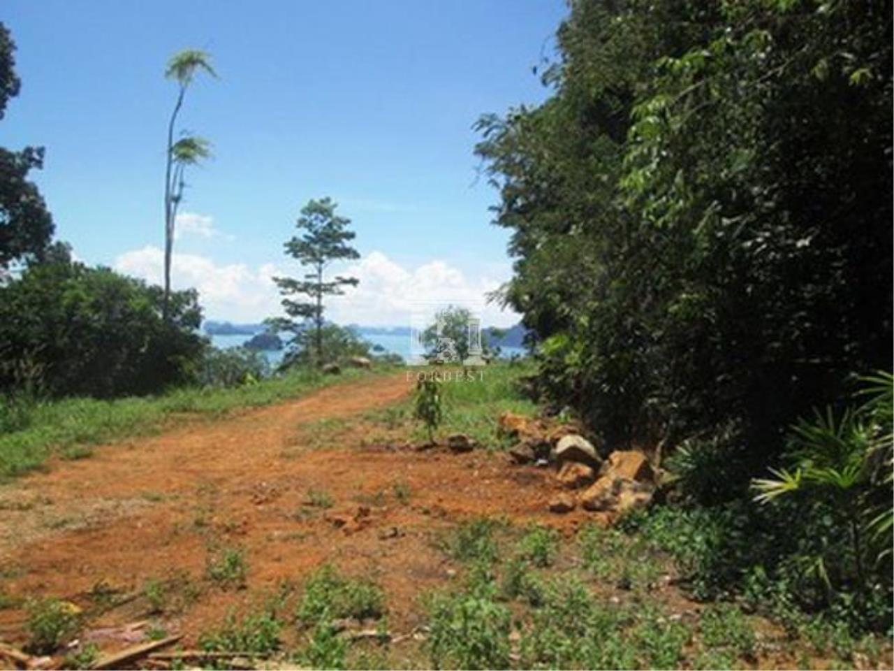 Forbest Properties Agency's 36804-Land for sale, in Krabi province, 9 rai 186.80 sq.wa. 3
