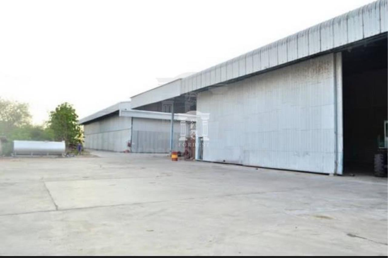 Forbest Properties Agency's 36537- rice mill for sale, in Suphanburi province, 37 rai 86 sq.wa. 1