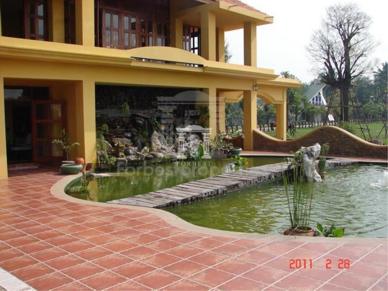 Forbest Properties Agency's  37723 - Single House Pak Chong , Khao Yai, Nakhon Ratchasima 16 rai 50 sq.w. 1