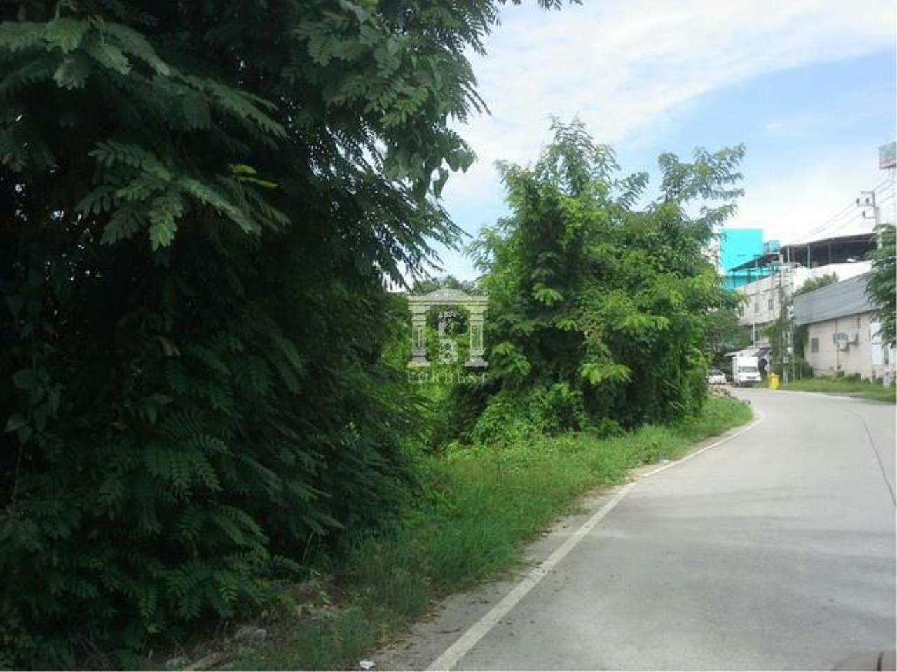 Forbest Properties Agency's 37530-Land for sale, on Nakornin rd., 2 rai 91 sq.wa. 1
