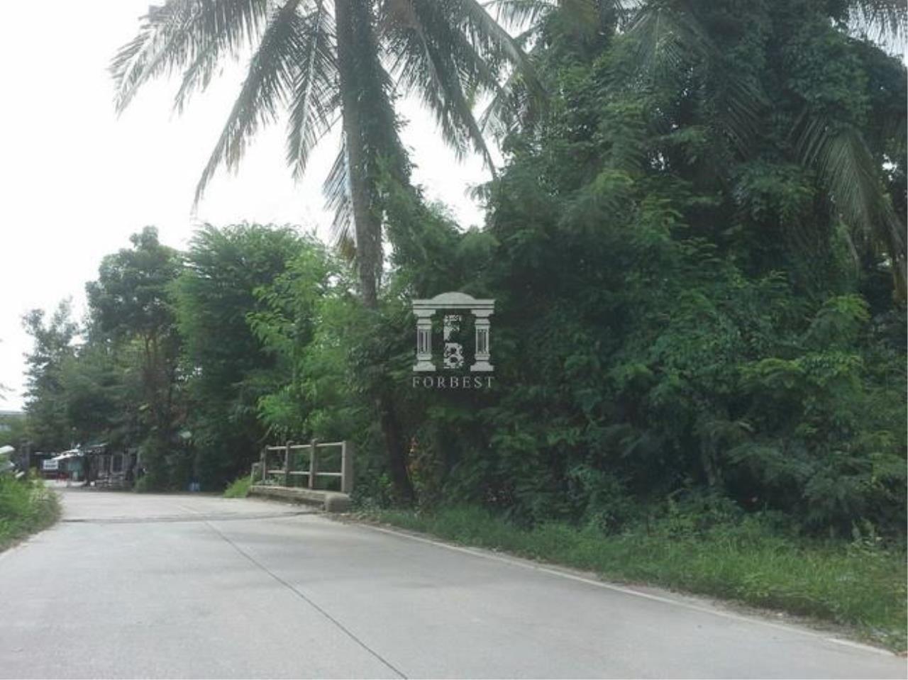 Forbest Properties Agency's 37530-Land for sale, on Nakornin rd., 2 rai 91 sq.wa. 3