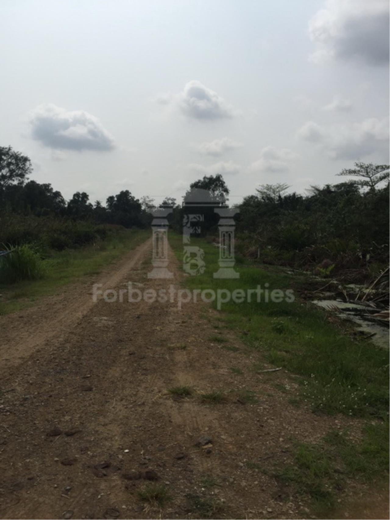 Forbest Properties Agency's 35941-Land For Sale, on Phetchahung Rd., land size 43 rai 8