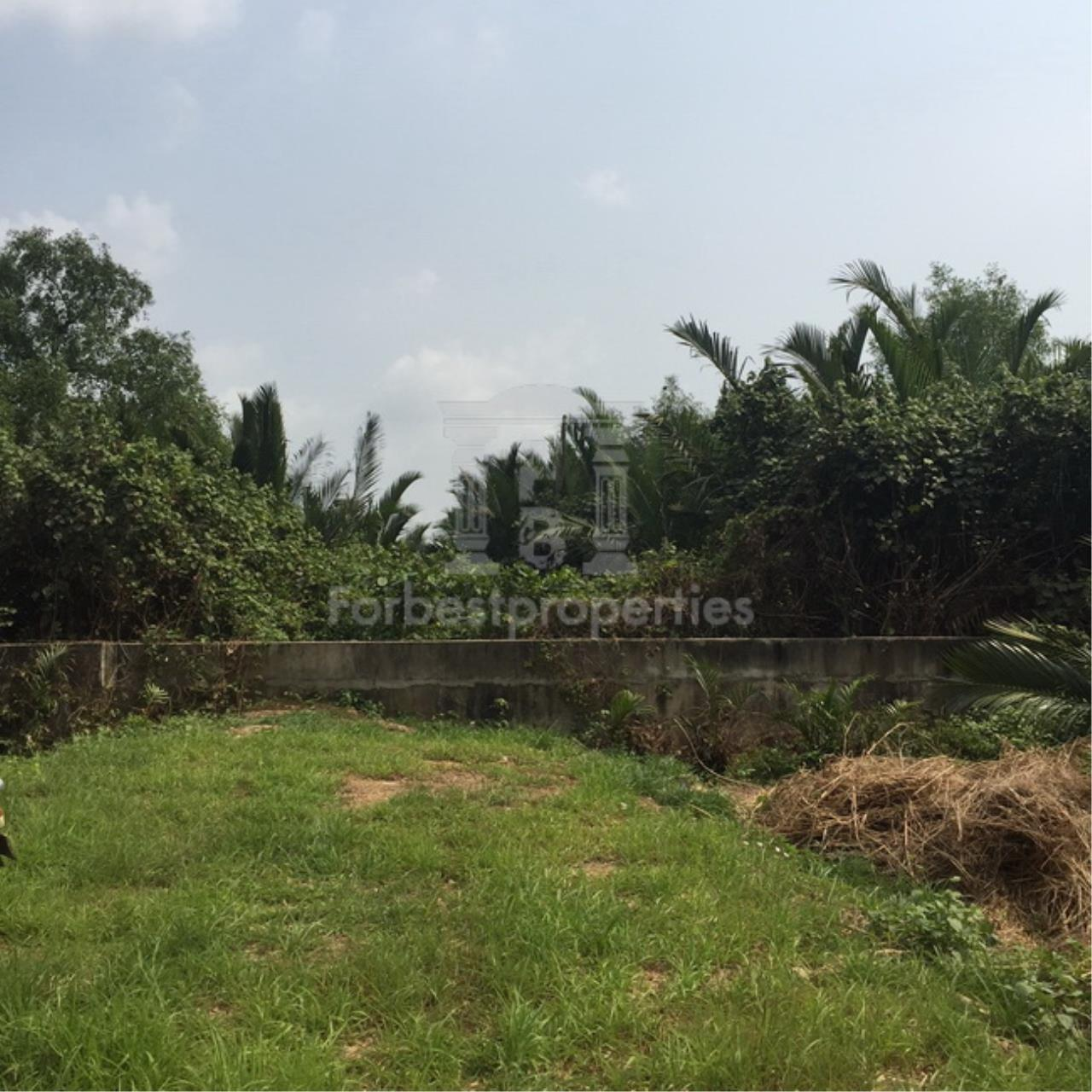 Forbest Properties Agency's 35941-Land For Sale, on Phetchahung Rd., land size 43 rai 9
