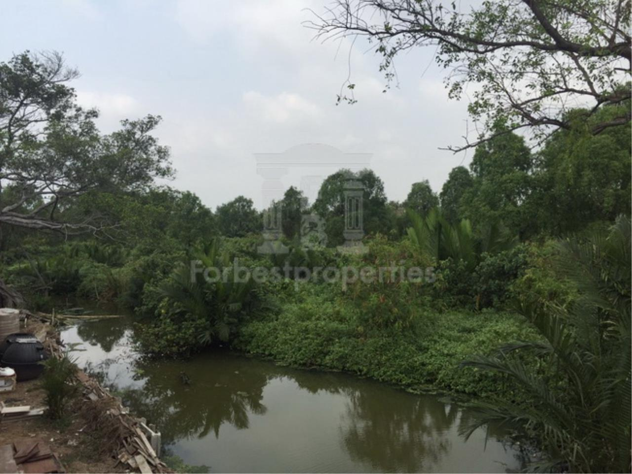 Forbest Properties Agency's 35941-Land For Sale, on Phetchahung Rd., land size 43 rai 11