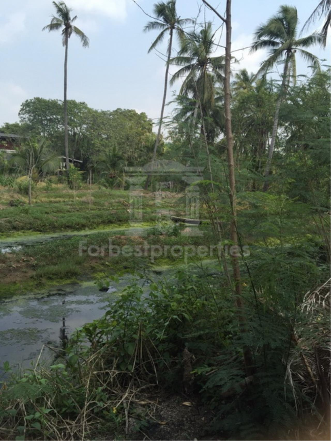Forbest Properties Agency's 35941-Land For Sale, on Phetchahung Rd., land size 43 rai 2