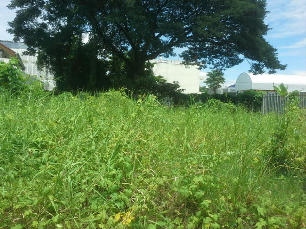 Forbest Properties Agency's 37529-Land For Sale, on Borommaratchachonnani Rd., 100 sq.wa. 2