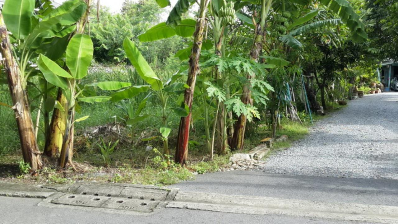 Forbest Properties Agency's 37649-Land for sale, onYothinpattana road, land size 333 sq.wa. 1