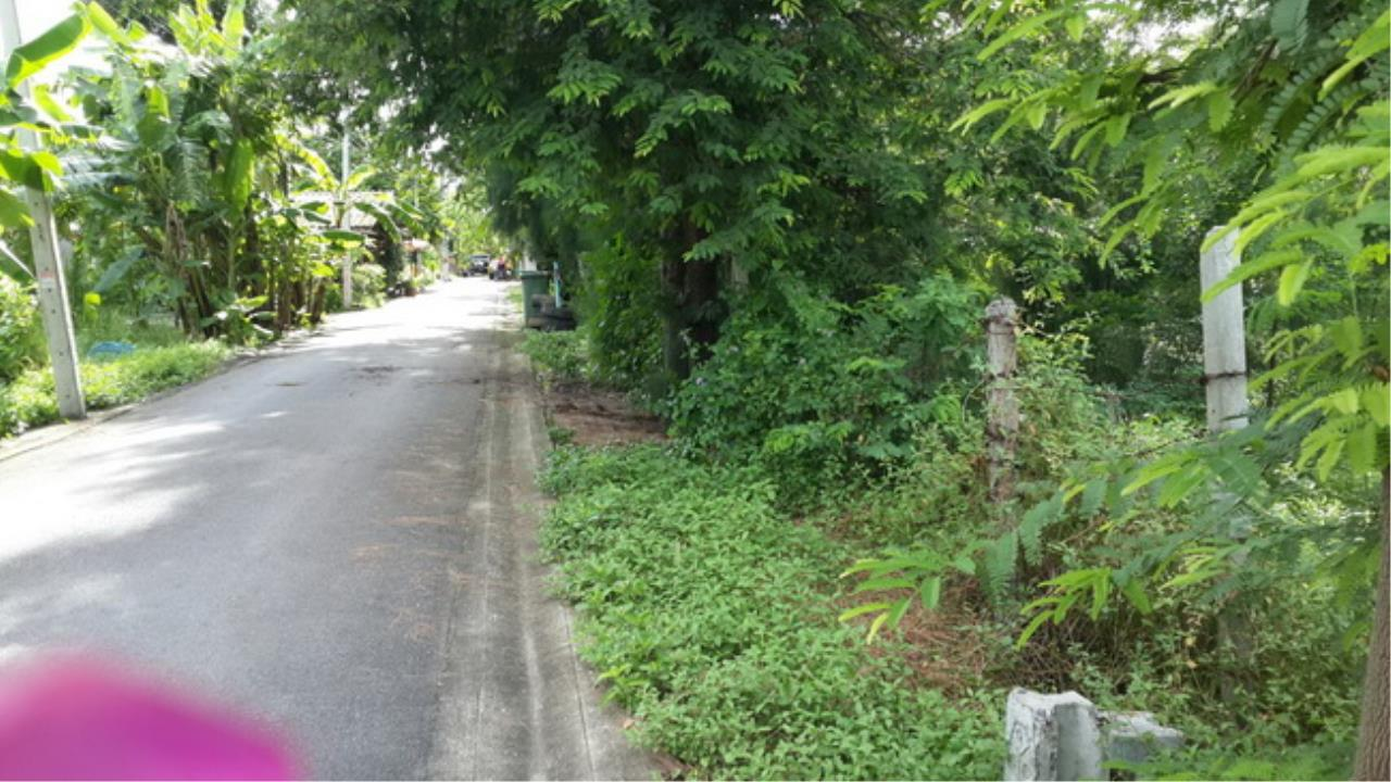 Forbest Properties Agency's 37650-Land for sale, onYothinpattana road, 167 sq.wa. 1