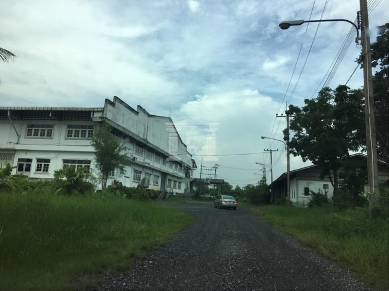 Forbest Properties Agency's 37652-Land for sale ,in Prasamutjaedee, 128 rai 110 sq.wa. 3