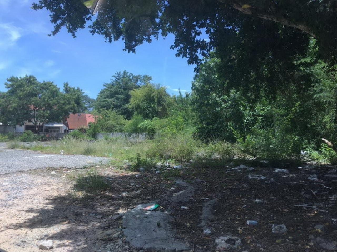 Forbest Properties Agency's 37694-Land for sale, in north Pattaya, 5 rai 187 sq.wa. 3