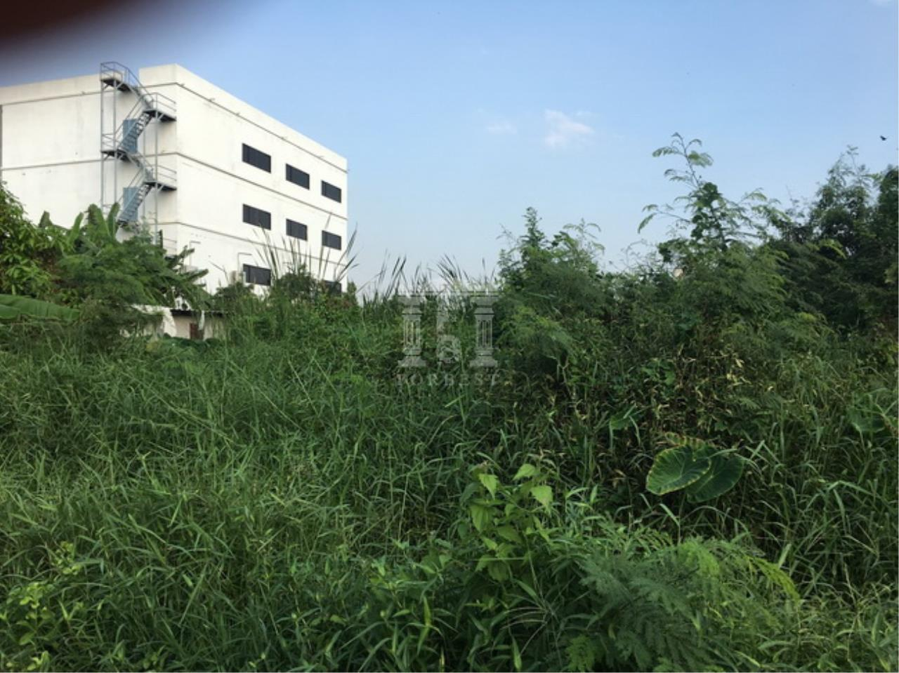 Forbest Properties Agency's 37844-Land for sale, on Phraek Sa road, 8 rai 203 sq.wa. 2