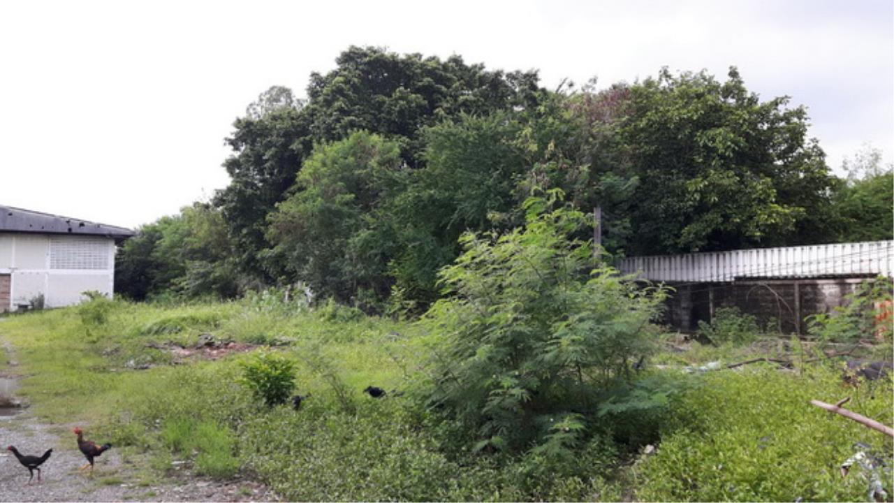 Forbest Properties Agency's 37858-Land for sale, on Cheangwattana road, 7 rai  1