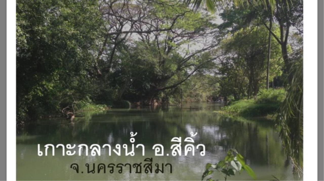 Forbest Properties Agency's 38228-Land for sale, in Amphoe sikhio, Nakhon Ratchasima, 13 rai 351 sq.wa.  1