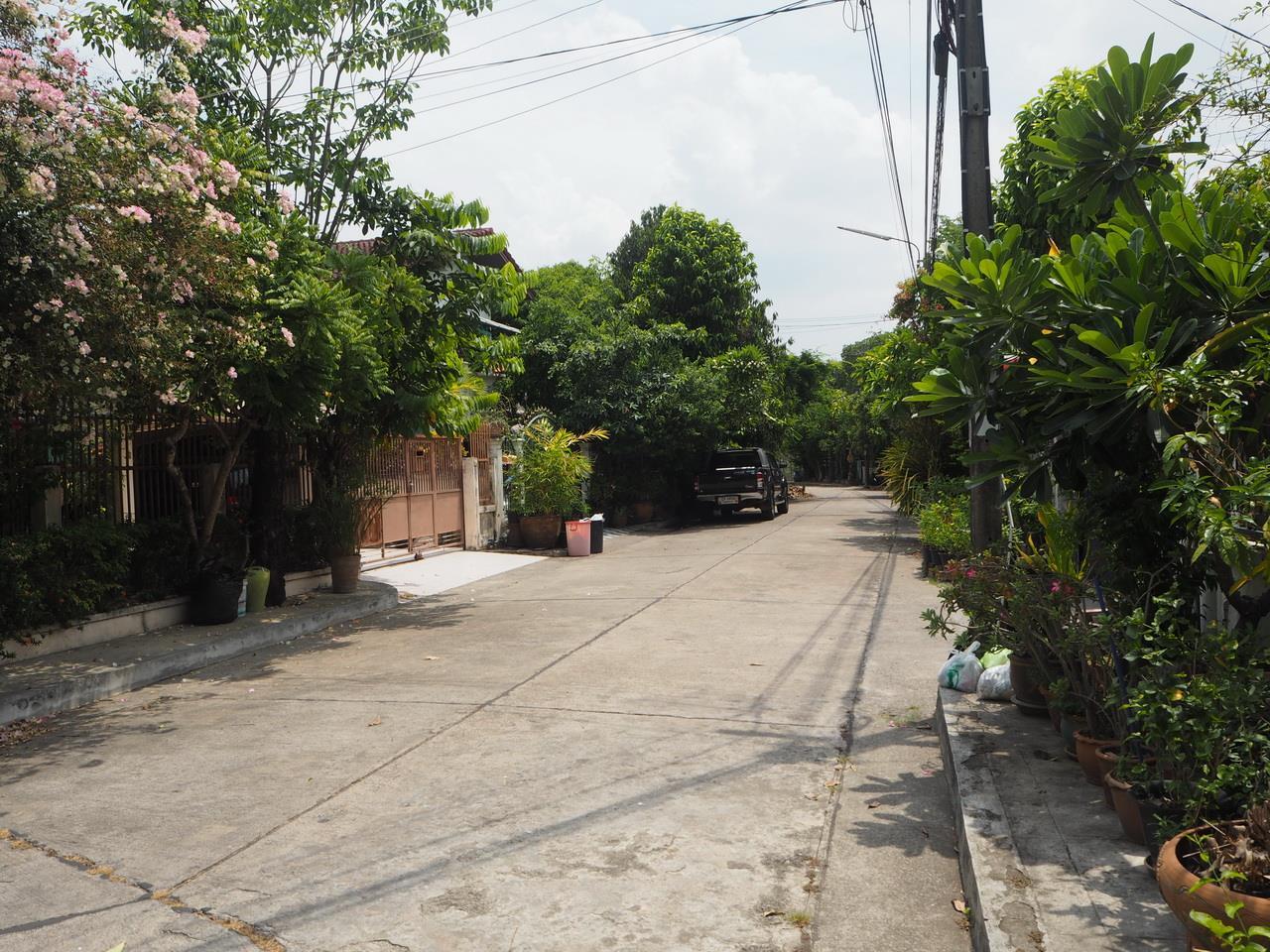 Forbest Properties Agency's 39003 - Single house Sammakorn Village on Ramkamhang Rd. 200 sq.w.  5